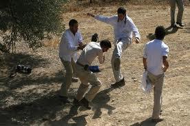 Israeli settlers attack Palestinian farmer