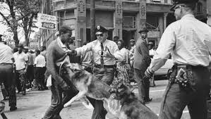 Youth marchers attacked by police dogs and fire hoses. This writer remembers seeing this photo at that time. It made a huge impression on him.