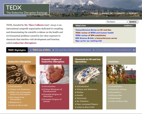 TEDX home page