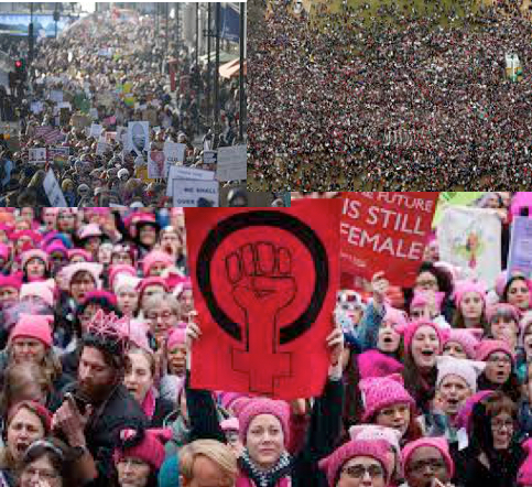 Women's March. One of the largest protests in US history.